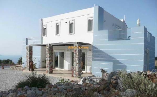 Modern luxury villa with a large plot