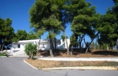 218, Villa with beach and pool among pine trees