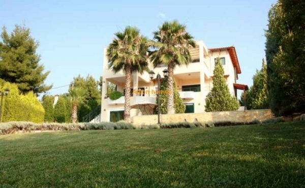 Double villa in a well-maintained plot with a large swimming pool