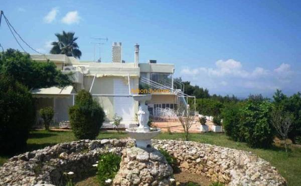 Excellent Villa in Oropos