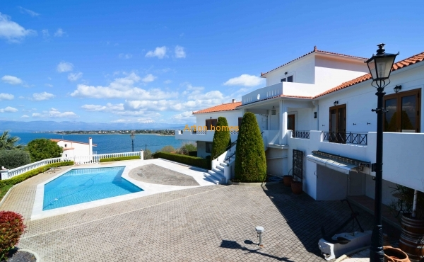 Villa in Municipality Anthidonos, Drosia with unlimited view